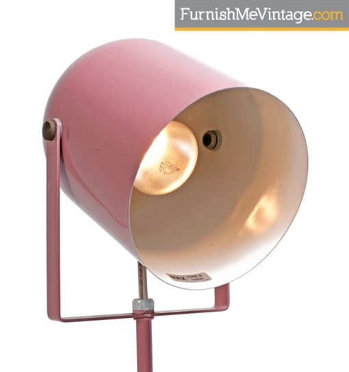 Lumiray Pink Floor Lamp